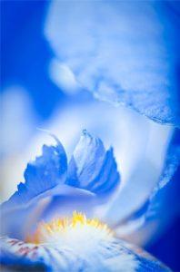 azure blue color