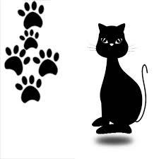 Buscarle la quinta pata al gato