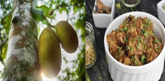 jackfruit superfood