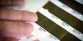 pantone 448 c color